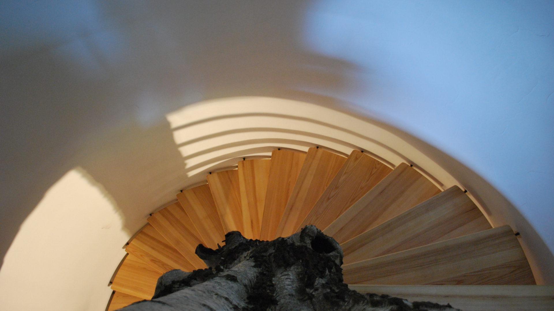 Eine Wendeltreppe, die sich um einen noch ganzen Baumstamm mit Rinde windet. Der Blick ist vom oberen Ende der Treppe abwärts gerichtet.